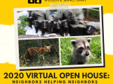 Virtual Open House, Aug 4-14